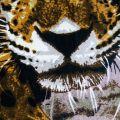 Пляжное полотенце Ягуар. ТМ Golden Daisy