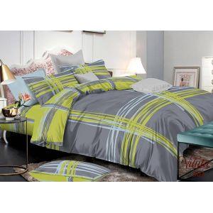Комплект постельного белья Вилюта арт. 301 (сатин твил)